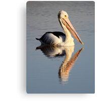 """Upon Reflection - A Pelican"" Canvas Print"