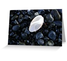 White Shell in the Wet Sand Greeting Card