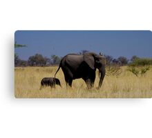 very close contact Canvas Print