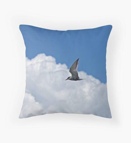 Whiskered Tern in Kenya Throw Pillow