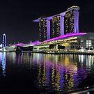 Marina Bay Sands At Night. Singapore. by Ralph de Zilva