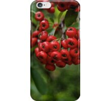 Christmas Red Berries iPhone Case/Skin