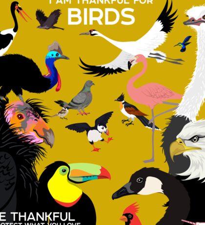 I Am Thankful For Birds Sticker