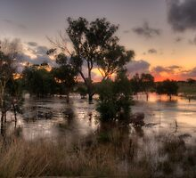 Flooding Rains - Junee, NSW Australia  - The HDR Experience by Philip Johnson