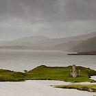 Ardvreck Castle, Loch Assynt, Scotland by Asher Haynes