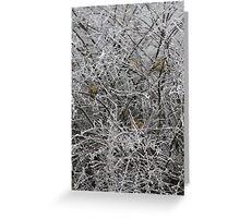 Christmas Card No.4 Greeting Card