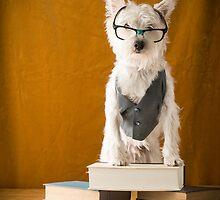 Nerd Dog by Edward Fielding