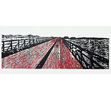 Like a Red Bridge to a Bull Photographic Print
