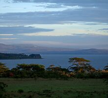 Lake Naivasha Sunrise by Sue Robinson