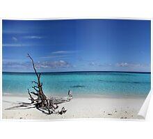 Island Sculpture Poster