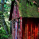 the cabin by marcwellman2000
