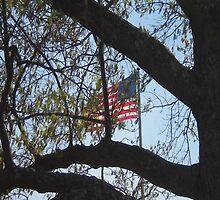 American Flag by Brian Alexander