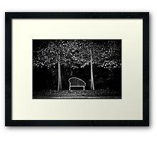 Park of Darkness Framed Print