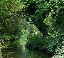 River scene by Sue Robinson