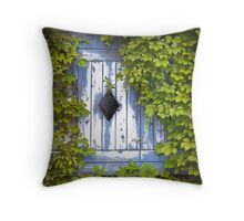 The Diamond Window Throw Pillow