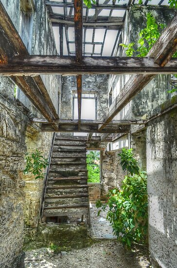 Remains of a house on West Hill Street in Nassau, The Bahamas by 242Digital