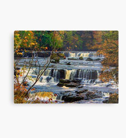 Aysgarth Falls Metal Print