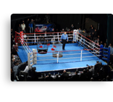 Barney hopes his first referee job--Ultimate Cage Fighting --isn't for the birds. Canvas Print