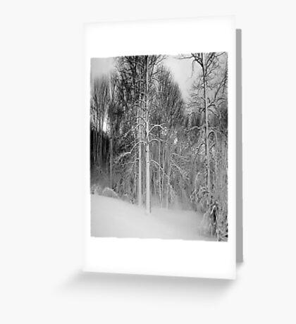 Virgina Snow Greeting Card