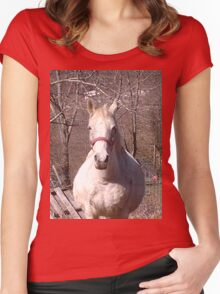 Friendly Horse Coming to Visit Attractive Camera Guy Women's Fitted Scoop T-Shirt