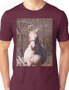 Friendly Horse Coming to Visit Attractive Camera Guy Unisex T-Shirt