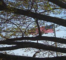 Manassas Flag by Brian Alexander