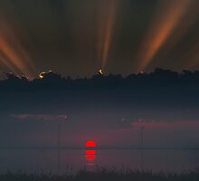 The red by THHoang