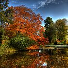 Colors of Autumn in Holland II by John44