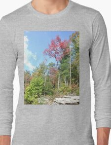 Pretty Rustic Appalachia Scene Rock & Trees Long Sleeve T-Shirt