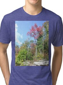 Pretty Rustic Appalachia Scene Rock & Trees Tri-blend T-Shirt