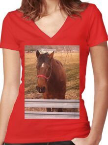 Pretty Brown Horse by a Fence in West Virginia Women's Fitted V-Neck T-Shirt