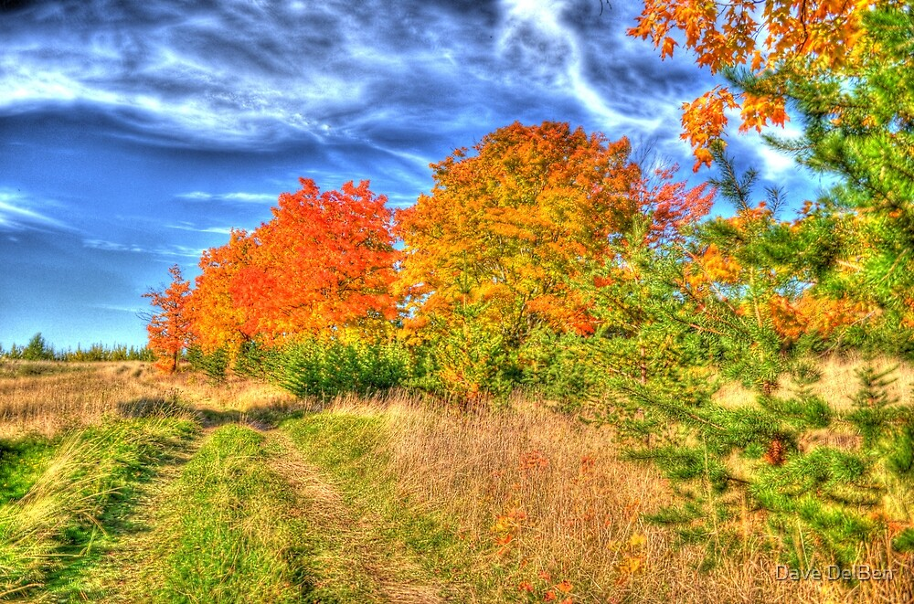Fall is here. by Dave DelBen