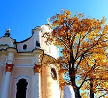 Wieskirche UNESCO World Heritage Site by ©The Creative Minds