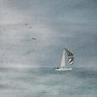 The Boat by MickP