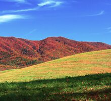 RICH MOUNTAIN,CADES COVE by Chuck Wickham
