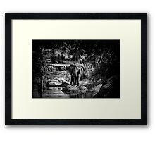 """""""On the Water Front"""" Framed Print"""