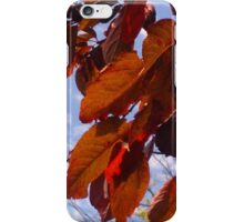 Autumn is in the Air iPhone Case/Skin
