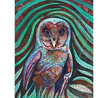 Owl Heart Photographic Print