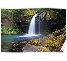 Iron Creek Falls Poster