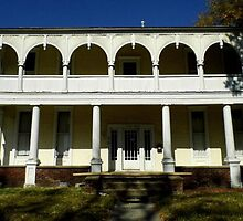 The Old John Deere House by WildestArt