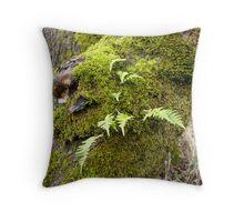 Licorice Root Fern Throw Pillow