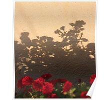 Mum Silhouette Poster