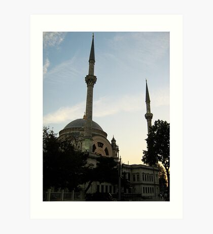 a mosque. Art Print