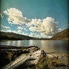 Irish Skies II by Sharon Johnstone