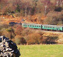 Steam Train running past Corfe Castle in Dorset by Jacqueline Longhurst