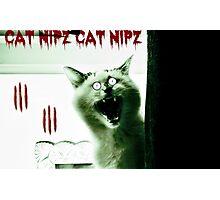 Cat Nipz Photographic Print