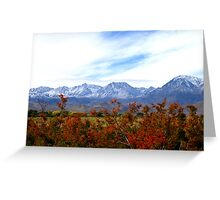 A Cool Sierra Fall Greeting Card
