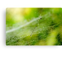 Spiders from Mars? Canvas Print