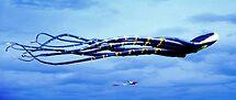 Go fly a kite © by Dawn M. Becker