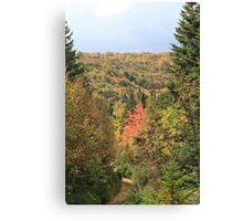 Fall Colors of Cape Breton  Canvas Print